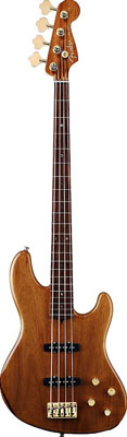 Fender Victor Bailey Signature Acoustic Bass Guitar